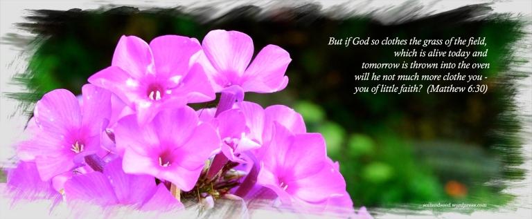 Matthew 6.jpg