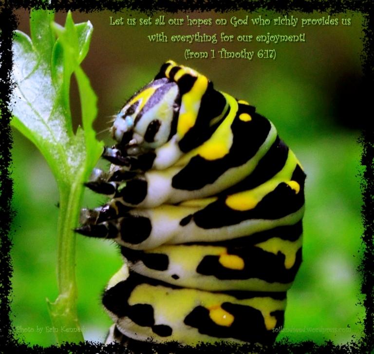 God Richly Provides