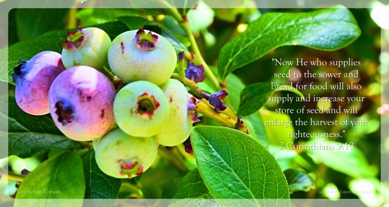 He Who Supplies Seed