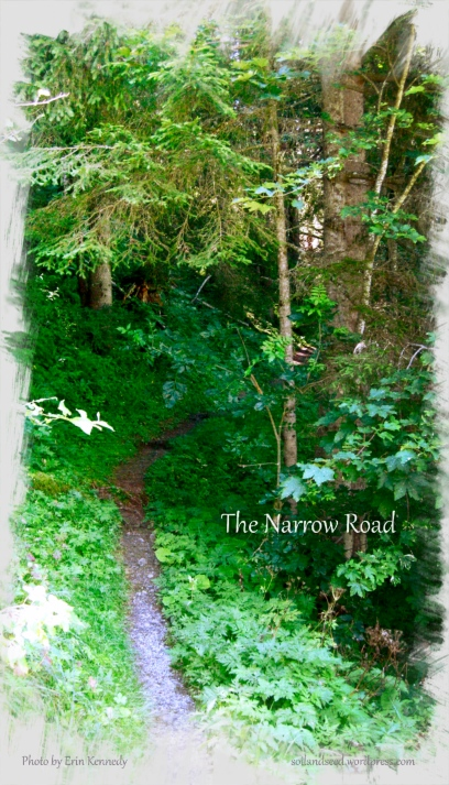 the-narrow-road