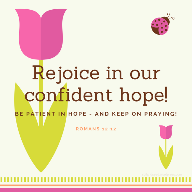Rejoice in our confident hope!
