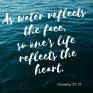 Heart's Reflection