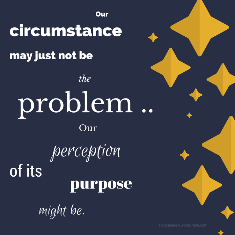 Problem and Perception