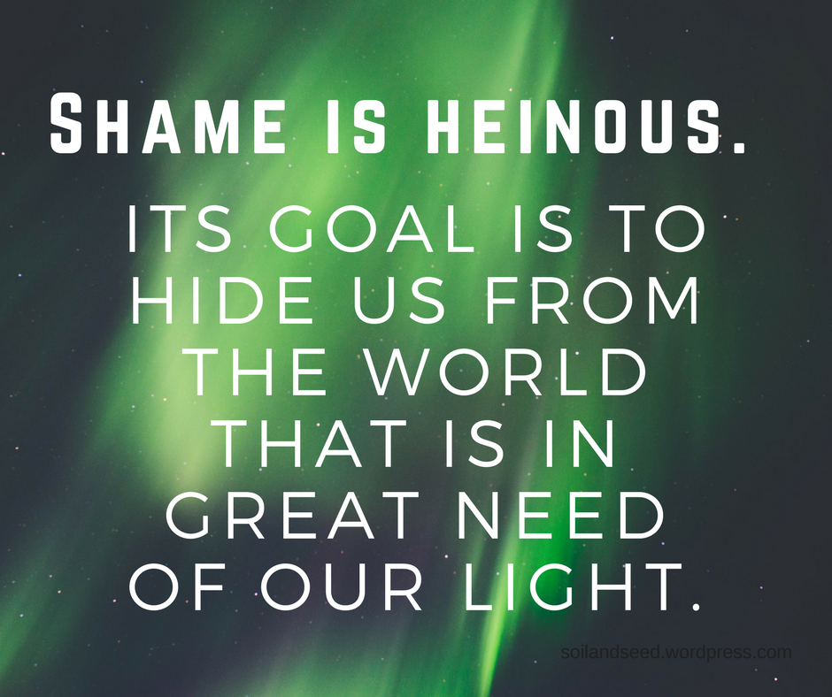 Shame is heinous..png