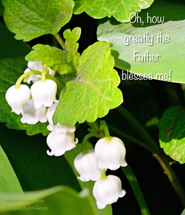How the Father Blesses!